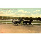 Harness Racers at Fair Grouds York PA