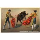 Bull Matadors Bullfighting