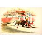 Bull Attacking Toreador Bullfighting