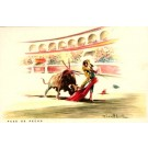 Toreador Stubbed Bull Bullfighting