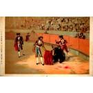 Bullfighting Scene of Defeated Bull Toreadors