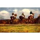 Jockeys on Horses Steeplechasing Sports Tuck