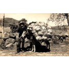 Mexican Child by Donkey Loaded with Baskets RPPC