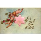 Cupids in Air Flower Roses Fabric Star