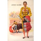 Embroidered Silk Toreador Bullfighting Sports
