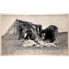 Navajo Indian Women Shearing Sheep Real Photo