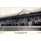 Dublin Horse Show 1904 Grand Stand