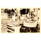 Workers at Pineapple Cannery Real Photo