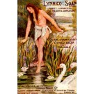 Advert Soap Nude Lady Swan Lotus