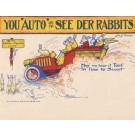 Cedar Rapids Rabbits IA