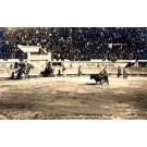 Miret Bull Fighting Real Photo Mexico