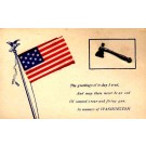 Ax Flag Washington Patriotic Novelty