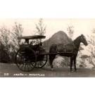 Horse-Drawn Wagon Mexico Real Photo