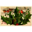 Robins Christmas Winsch Novelty