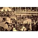 Monticello Harness Horses NY Postcad