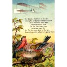 Wright Biplane and Birds Poem