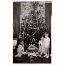 European Royalty Children Tree RP