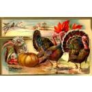 Winsch Turkeys Pumpkin Novelty