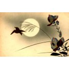 Japanese Art Nouveau Birds