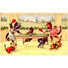 Ping Pong Cats Humorous Belgian