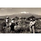 Yanez Mexican Farming Real Photo